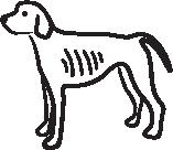 Lean Dog